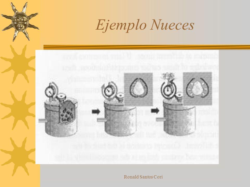 Ronald Santos Cori Desarrollo no uniforme de elementos del sistema