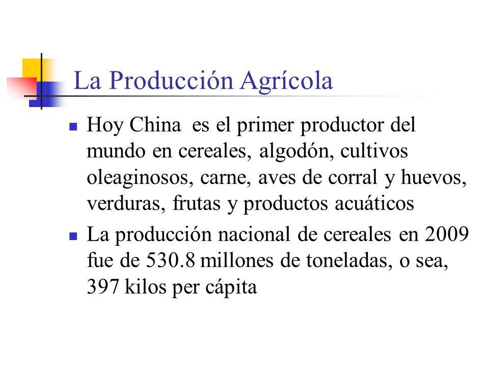 Algunos Datos sobre la Producción Agrícola de China 1978-2009 Unidad: miles de Tm Tipo1978200120052006200720082009 Cereales 304.765452.640484.010497.460501.500528.500530.820 Algodón 2.1675.3245.7006.7307.6007.5006.400 Cultivos Oleaginosos 5.21228.64830.78030.62024.61029.50031.000 Caña de Azúcar 21.11275.66387.60099.250 111.100130.000122.000 Remolacha 2.70210.8897.91010.620 Tabaco 1.0522.0452.4102.4702.3902.6002.800 Té 2687029201.0201.1401.2401.350 Carnes 8.56363.33977.00081.00068.00072.69076.420 Productos Acuáticos 4.65443.81351.00052.50047.37048.95051.200