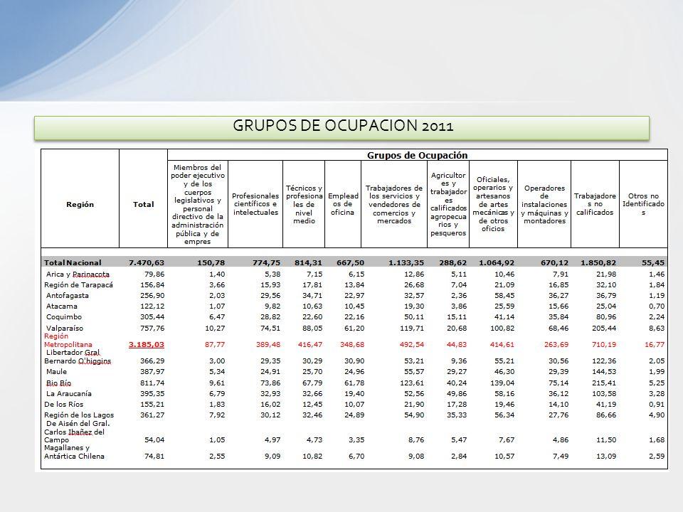 GRUPOS DE OCUPACION 2011