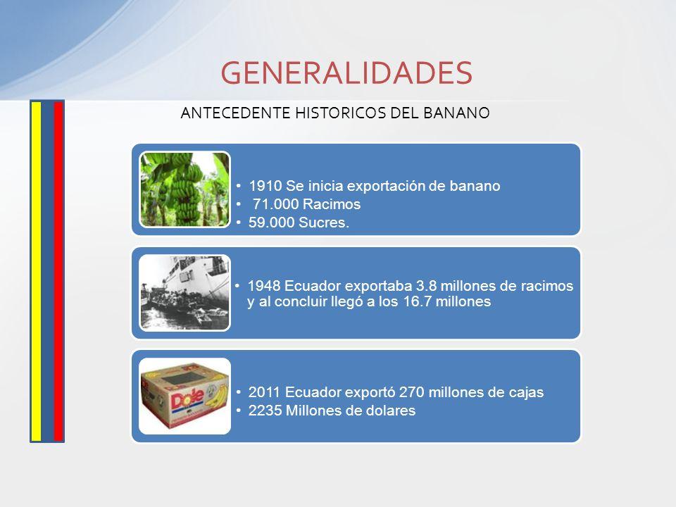1910 Se inicia exportación de banano 71.000 Racimos 59.000 Sucres. 1948 Ecuador exportaba 3.8 millones de racimos y al concluir llegó a los 16.7 millo