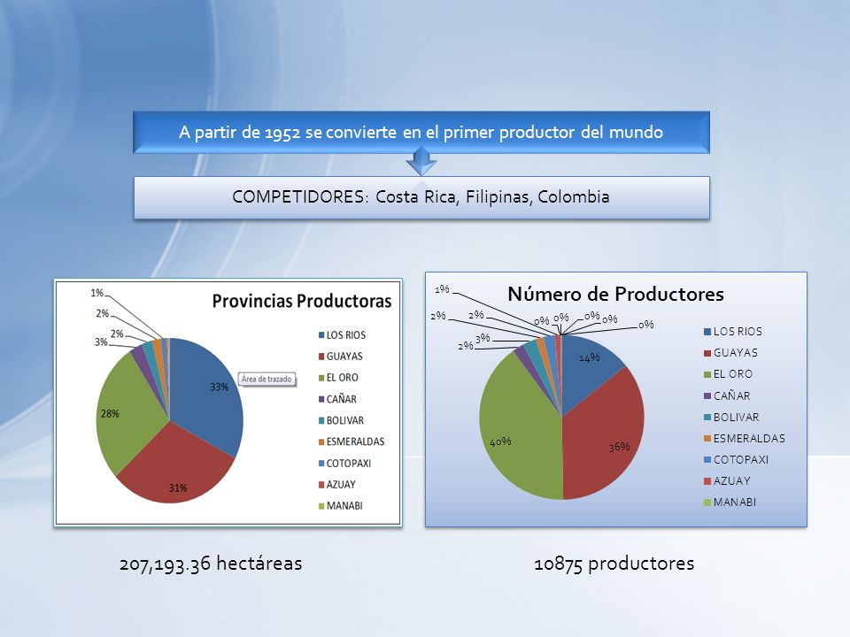COMPETIDORES: Costa Rica, Filipinas, Colombia A partir de 1952 se convierte en el primer productor del mundo 207,193.36 hectáreas 10875 productores