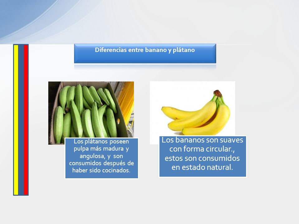 Los plátanos poseen pulpa más madura y angulosa, y son consumidos después de haber sido cocinados. Los bananos son suaves con forma circular., estos s