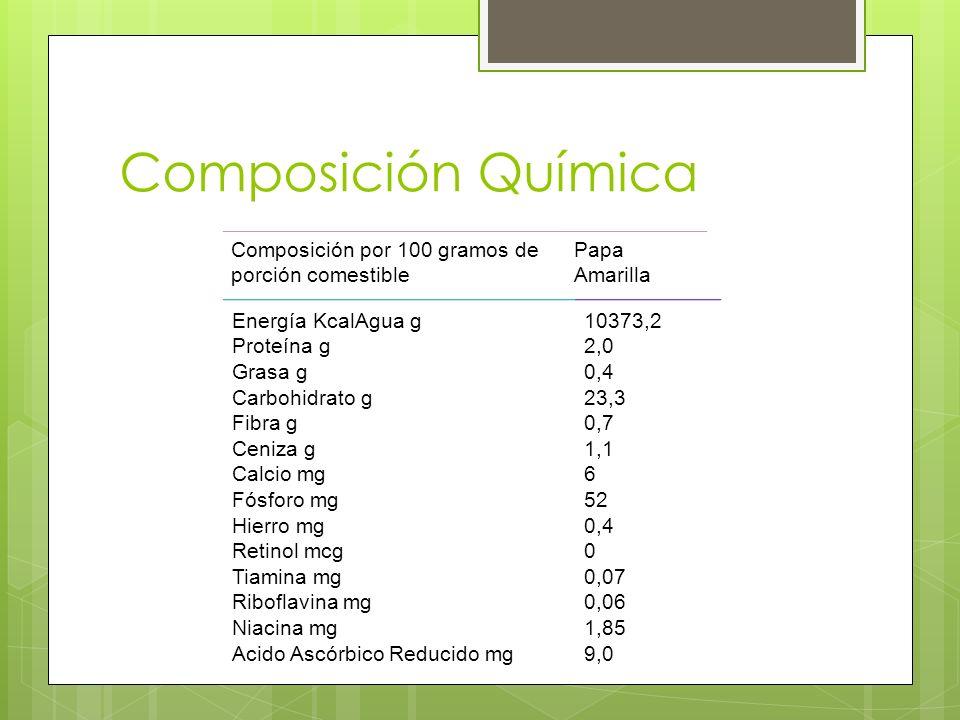 Composición Química Composición por 100 gramos de porción comestible Papa Amarilla Energía KcalAgua g Proteína g Grasa g Carbohidrato g Fibra g Ceniza