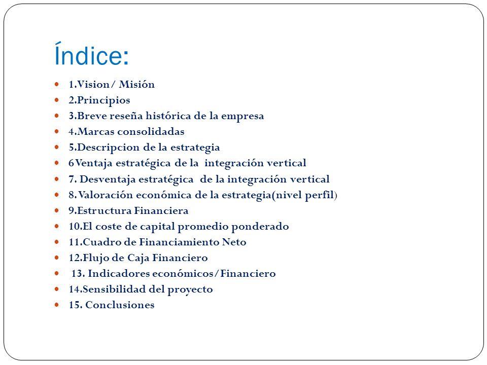 Índice: 1.Vision/ Misión 2.Principios 3.Breve reseña histórica de la empresa 4.Marcas consolidadas 5.Descripcion de la estrategia 6 Ventaja estratégica de la integración vertical 7.