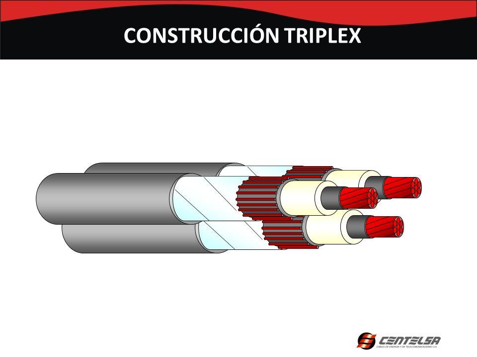 CONSTRUCCIÓN TRIPLEX