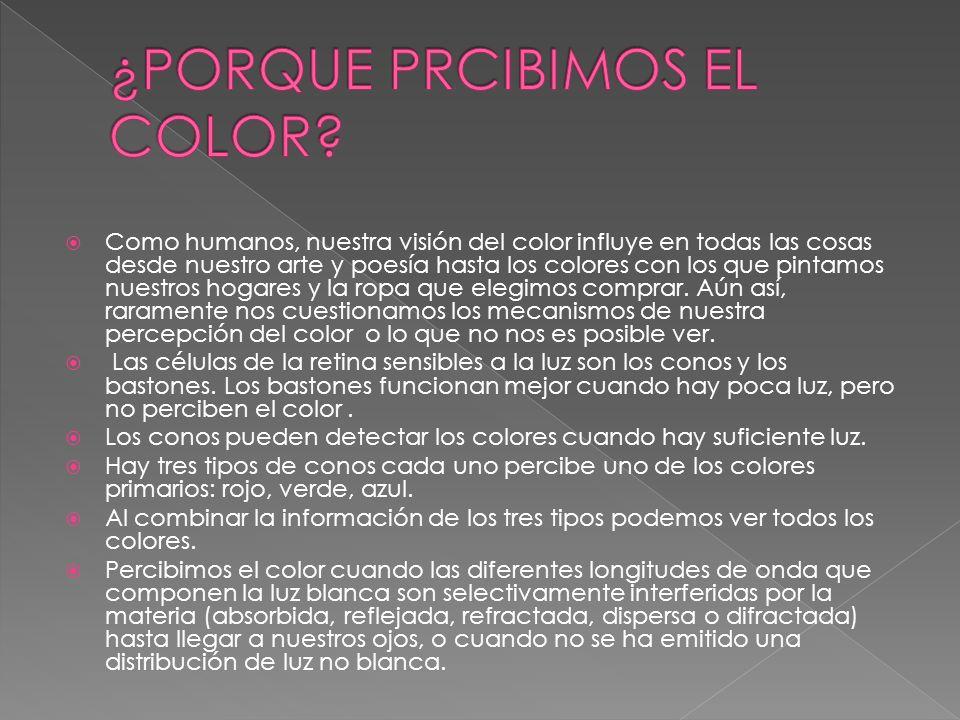 Como humanos, nuestra visión del color influye en todas las cosas desde nuestro arte y poesía hasta los colores con los que pintamos nuestros hogares
