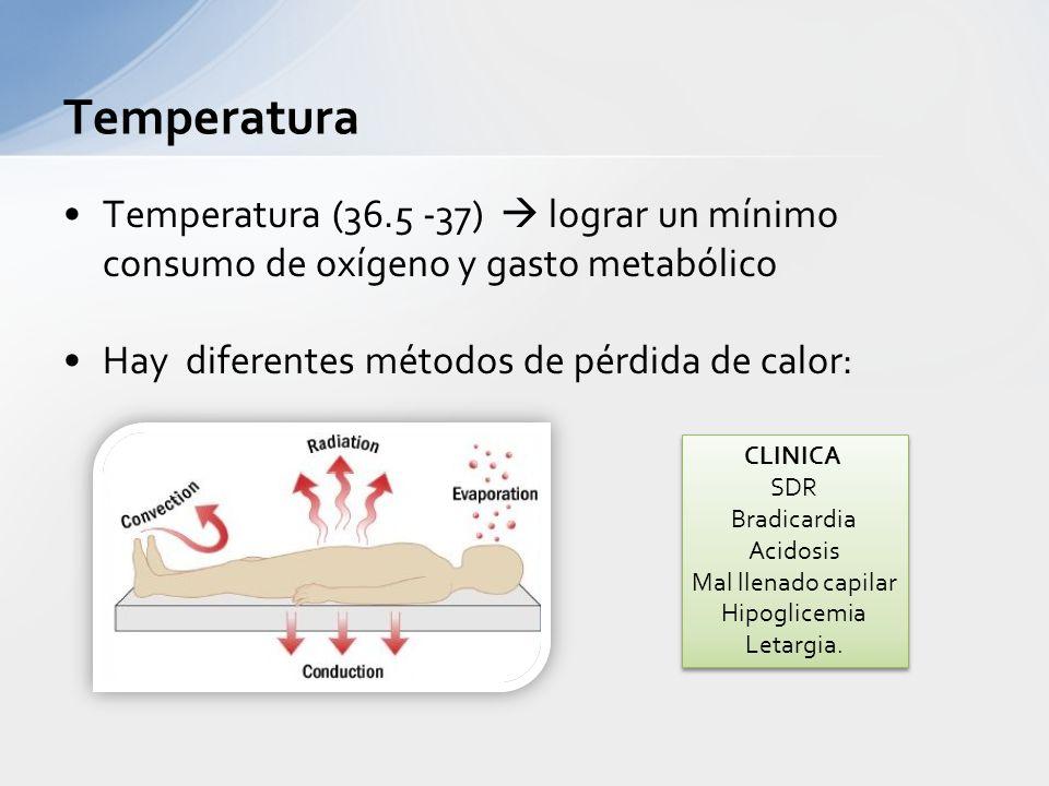 Temperatura (36.5 -37) lograr un mínimo consumo de oxígeno y gasto metabólico Hay diferentes métodos de pérdida de calor: Temperatura CLINICA SDR Brad