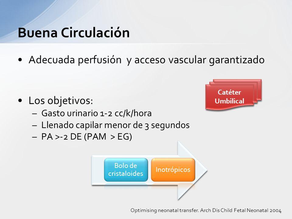 Adecuada perfusión y acceso vascular garantizado Los objetivos: –Gasto urinario 1-2 cc/k/hora –Llenado capilar menor de 3 segundos –PA >-2 DE (PAM > E