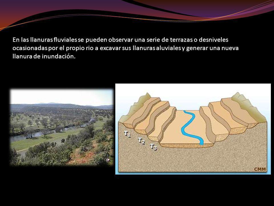 En las llanuras fluviales se pueden observar una serie de terrazas o desniveles ocasionadas por el propio rio a excavar sus llanuras aluviales y gener