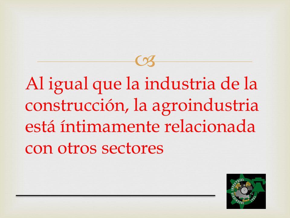 Al igual que la industria de la construcción, la agroindustria está íntimamente relacionada con otros sectores