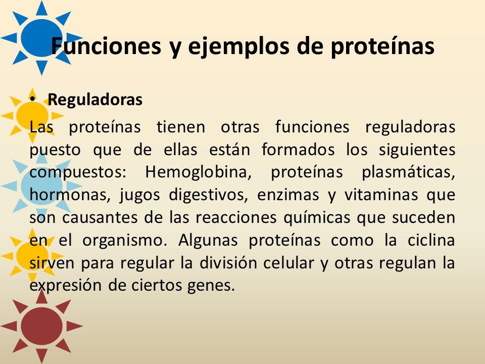 Reguladoras Las proteínas tienen otras funciones reguladoras puesto que de ellas están formados los siguientes compuestos: Hemoglobina, proteínas plas