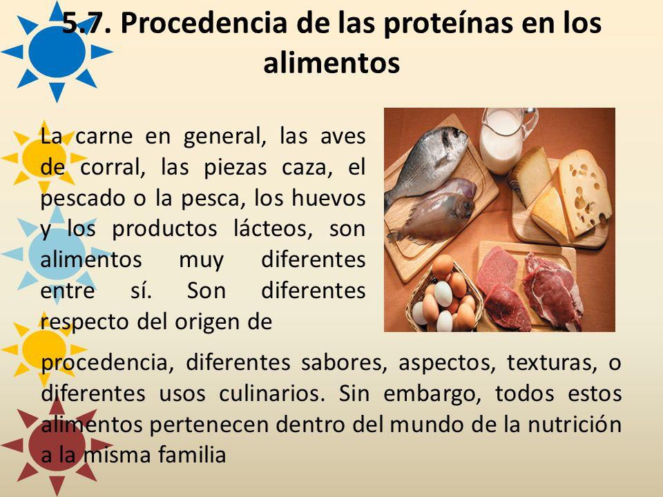 5.7. Procedencia de las proteínas en los alimentos La carne en general, las aves de corral, las piezas caza, el pescado o la pesca, los huevos y los p