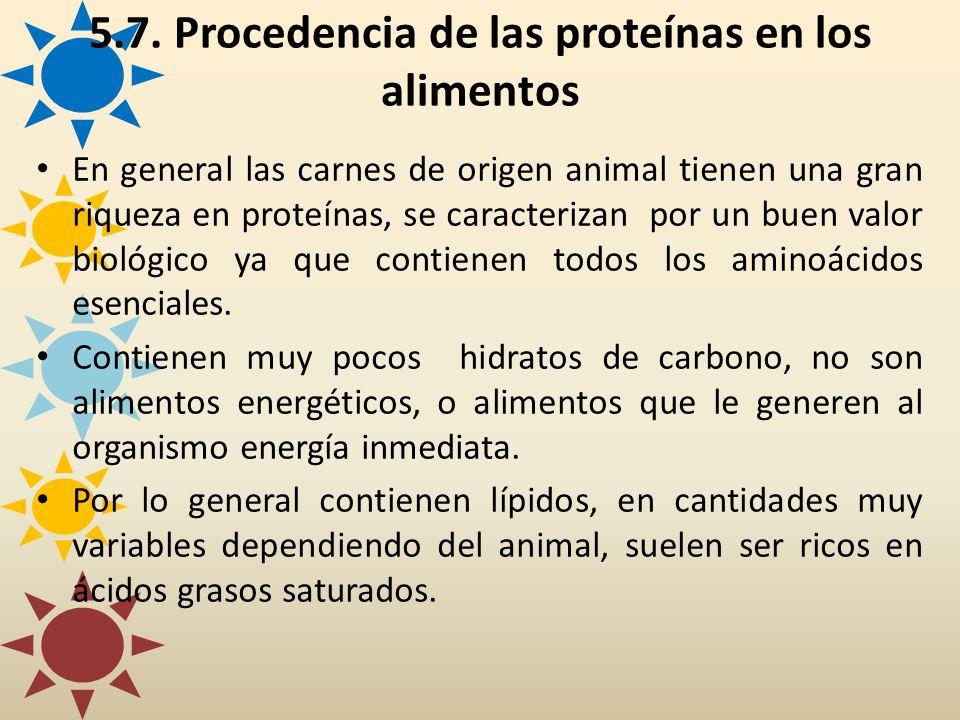 En general las carnes de origen animal tienen una gran riqueza en proteínas, se caracterizan por un buen valor biológico ya que contienen todos los am