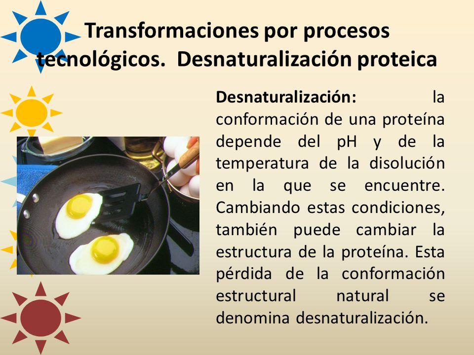 Transformaciones por procesos tecnológicos. Desnaturalización proteica Desnaturalización: la conformación de una proteína depende del pH y de la tempe