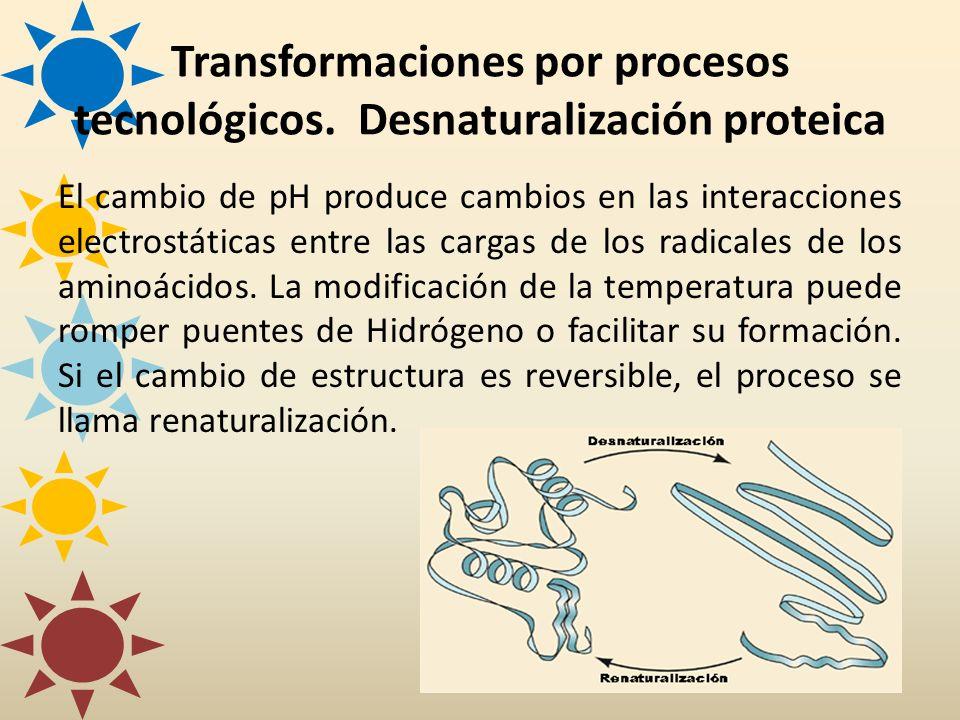 El cambio de pH produce cambios en las interacciones electrostáticas entre las cargas de los radicales de los aminoácidos. La modificación de la tempe