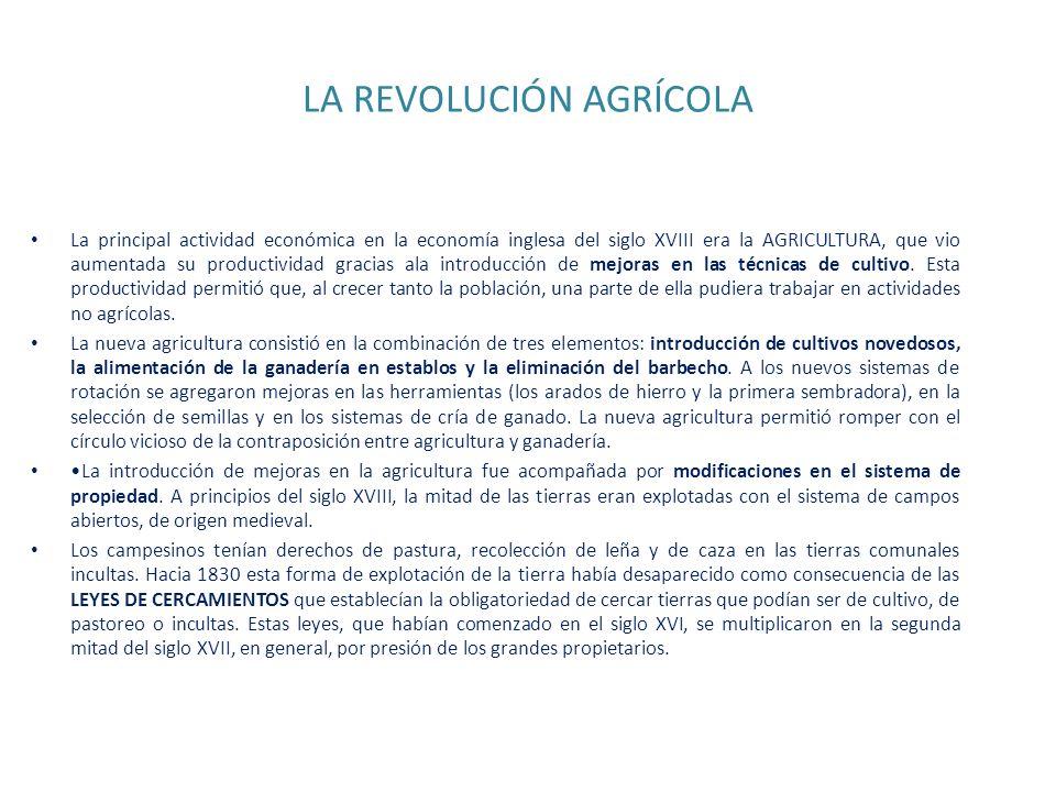 LA REVOLUCIÓN AGRÍCOLA La principal actividad económica en la economía inglesa del siglo XVIII era la AGRICULTURA, que vio aumentada su productividad