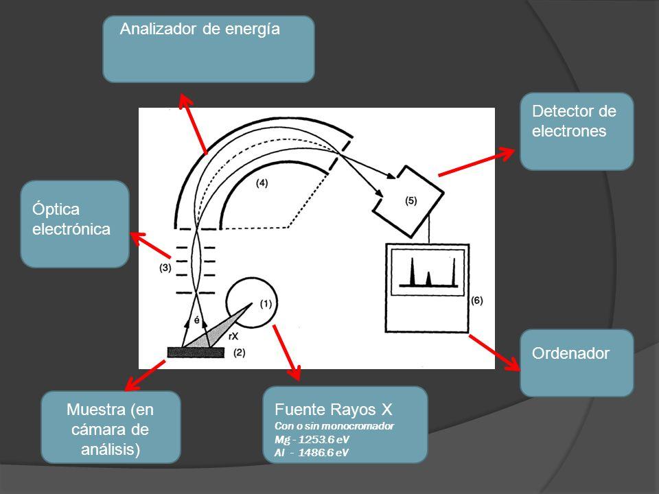 Fuente Rayos X Con o sin monocromador Mg - 1253.6 eV Al - 1486.6 eV Muestra (en cámara de análisis) Óptica electrónica Analizador de energía Detector