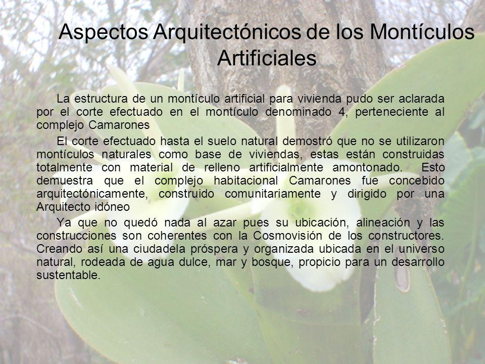 La estructura de un montículo artificial para vivienda pudo ser aclarada por el corte efectuado en el montículo denominado 4, perteneciente al complej