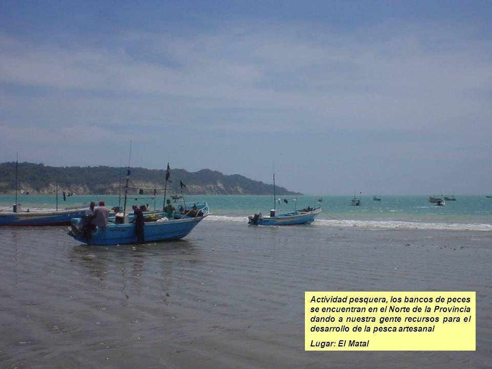 Actividad pesquera, los bancos de peces se encuentran en el Norte de la Provincia dando a nuestra gente recursos para el desarrollo de la pesca artesa