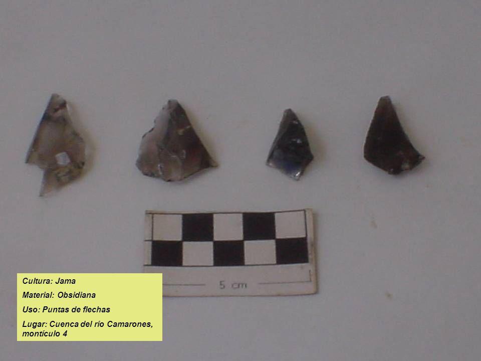Cultura: Jama Material: Obsidiana Uso: Puntas de flechas Lugar: Cuenca del río Camarones, montículo 4