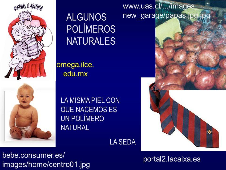 bebe.consumer.es/ images/home/centro01.jpg portal2.lacaixa.es www.uas.cl/.../images_ new_garage/papas.jpg.jpg omega.ilce. edu.mx ALGUNOS POLÍMEROS NAT