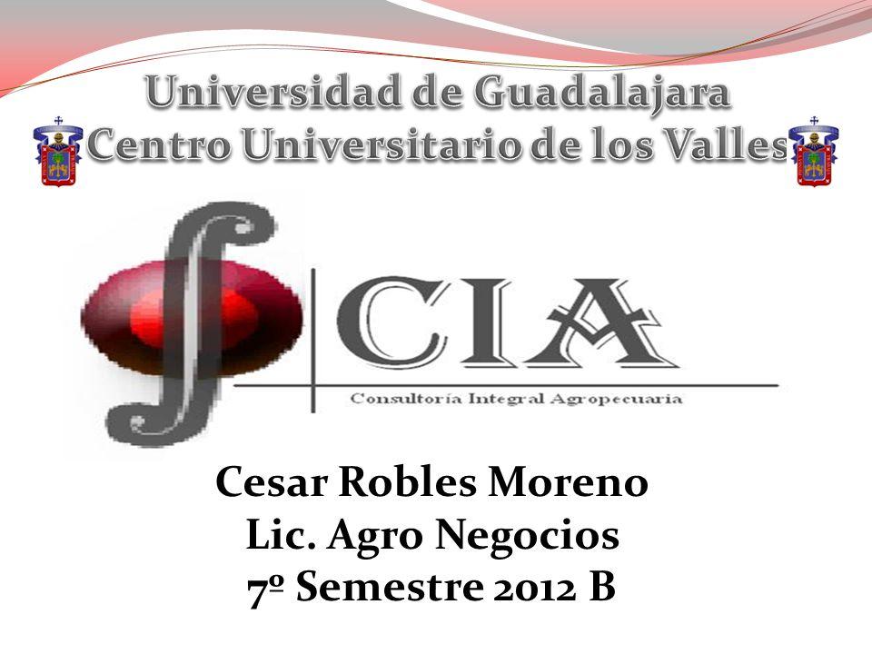 Cesar Robles Moreno Lic. Agro Negocios 7º Semestre 2012 B