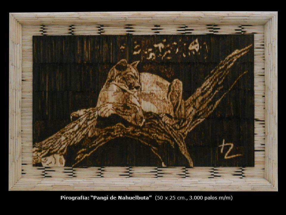Pirografía: Pangi de Nahuelbuta (50 x 25 cm., 3.000 palos m/m)