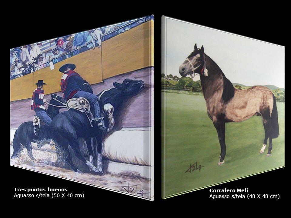 Tres puntos buenos Aguasso s/tela (50 X 40 cm) Corralero Meli Aguasso s/tela (48 X 48 cm)