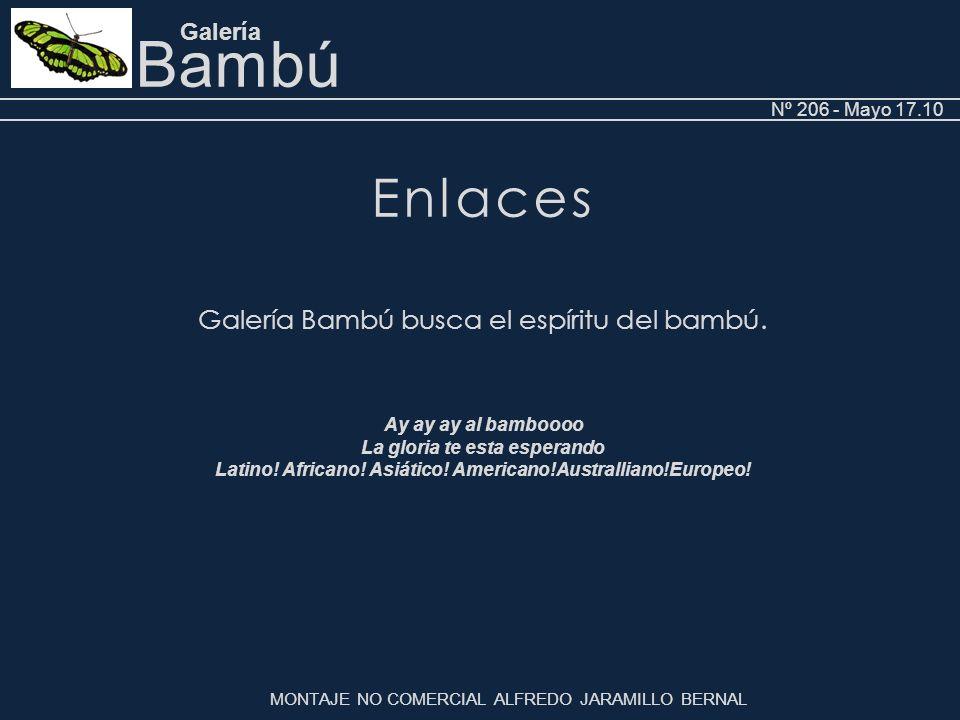 Bambú Galería Nº 206 - Mayo 17.10.