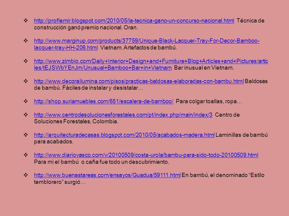 http://proflemir.blogspot.com/2010/05/la-tecnica-gano-un-concurso-nacional.html Técnica de construcción ganó premio nacional.