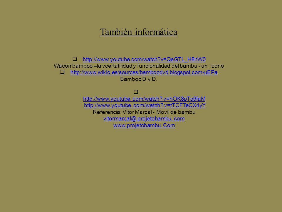 También informática http://www.youtube.com/watch?v=QeGTL_H8nW0 Wacon bamboo –la vcertatilidad y funcionalidad del bambú - un icono http://www.wikio.es/sources/bamboodvd.blogspot.com-uEPa Bamboo D.v.D.