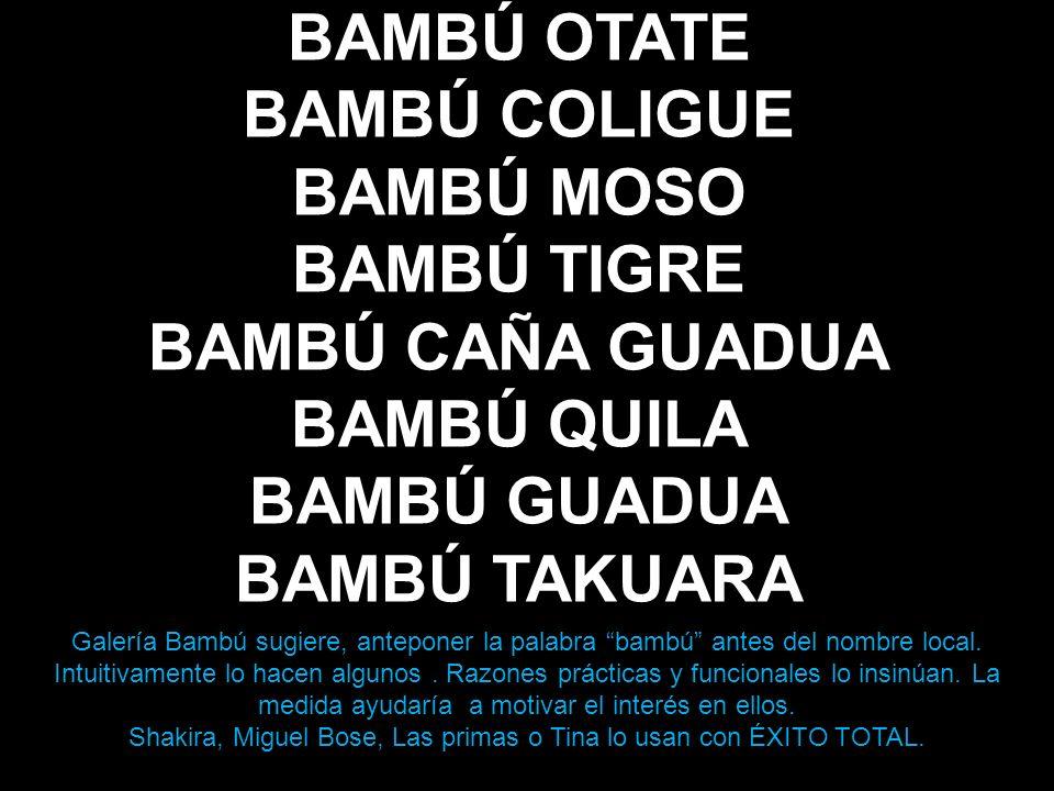 BAMBÚ OTATE BAMBÚ COLIGUE BAMBÚ MOSO BAMBÚ TIGRE BAMBÚ CAÑA GUADUA BAMBÚ QUILA BAMBÚ GUADUA BAMBÚ TAKUARA Galería Bambú sugiere, anteponer la palabra bambú antes del nombre local.