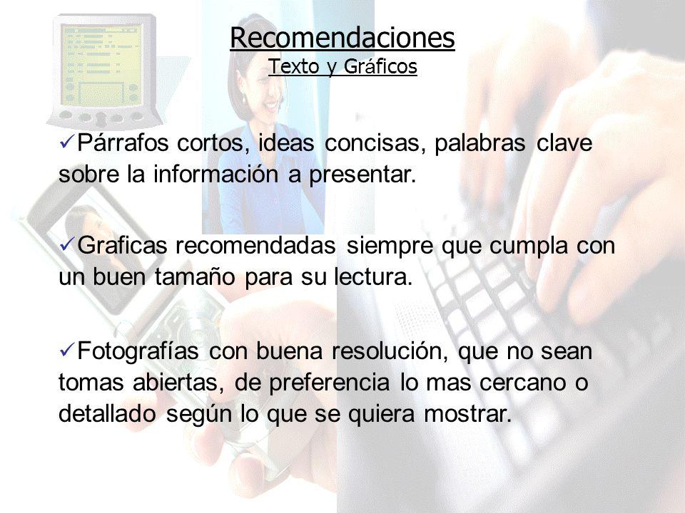 Recomendaciones Texto y Gr á ficos Párrafos cortos, ideas concisas, palabras clave sobre la información a presentar.