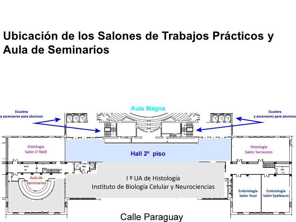 Ubicación de los Salones de Trabajos Prácticos y Aula de Seminarios
