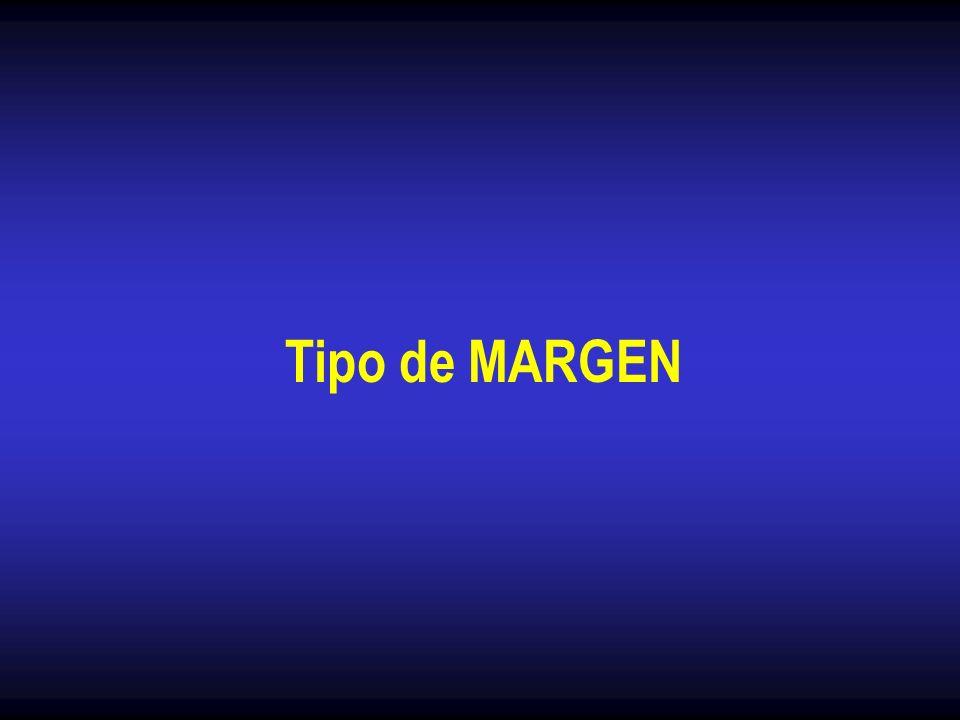 Tipo de MARGEN