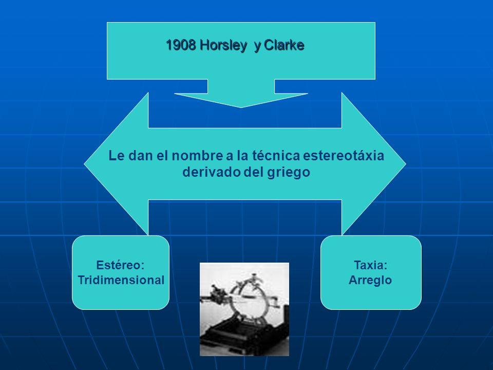 1908 Horsley y Clarke Le dan el nombre a la técnica estereotáxia derivado del griego Estéreo: Tridimensional Taxia: Arreglo