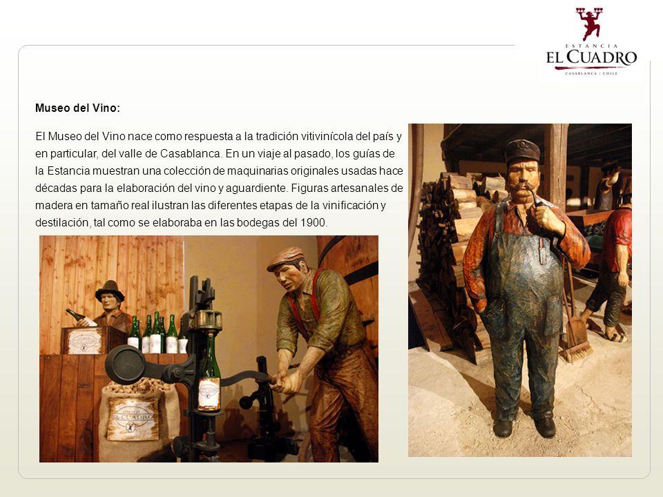 Museo del Vino: El Museo del Vino nace como respuesta a la tradición vitivinícola del país y en particular, del valle de Casablanca.