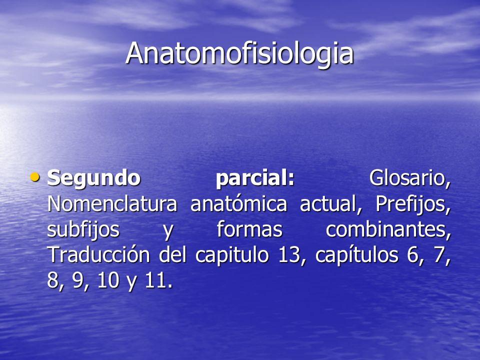 Anatomofisiologia Segundo parcial: Glosario, Nomenclatura anatómica actual, Prefijos, subfijos y formas combinantes, Traducción del capitulo 13, capít