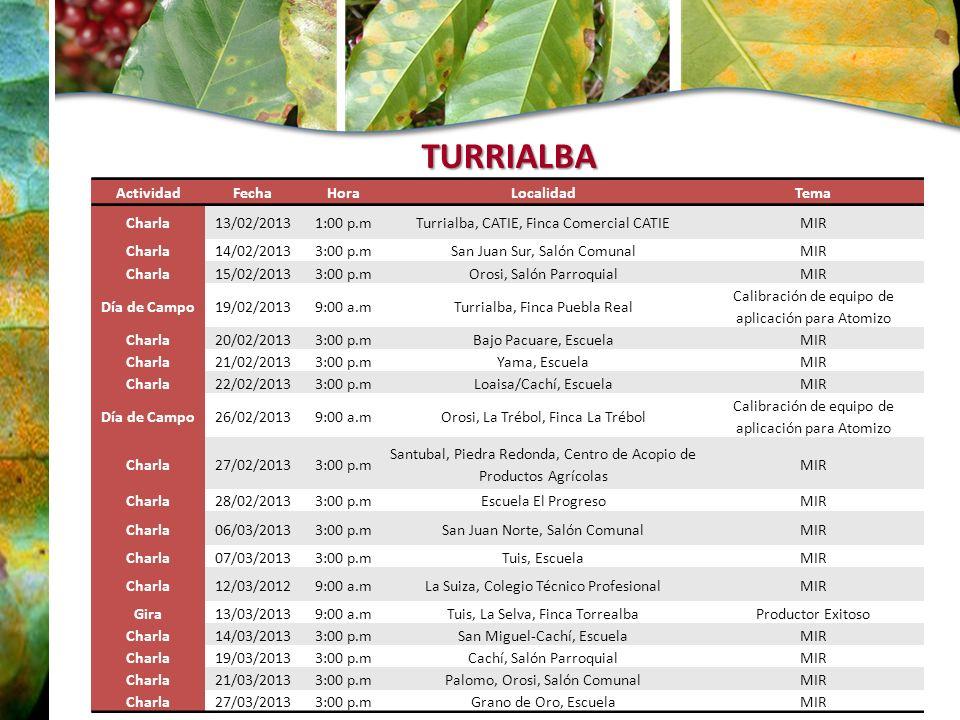 TURRIALBA ActividadFechaHoraLocalidadTema Charla13/02/20131:00 p.mTurrialba, CATIE, Finca Comercial CATIEMIR Charla14/02/20133:00 p.mSan Juan Sur, Sal