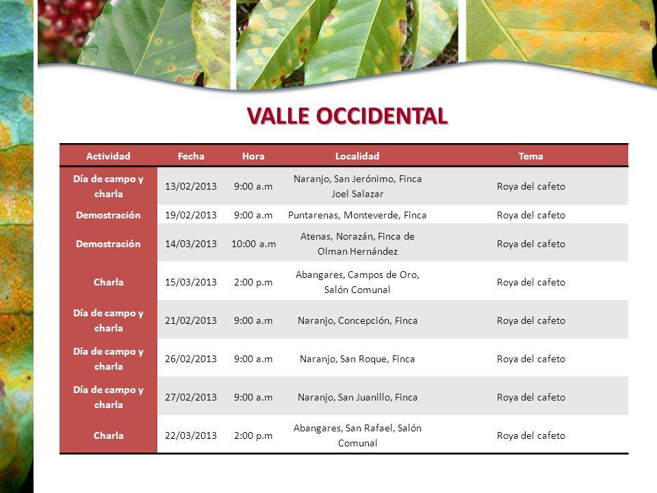 VALLE OCCIDENTAL ActividadFechaHoraLocalidadTema Día de campo y charla 13/02/20139:00 a.m Naranjo, San Jerónimo, Finca Joel Salazar Roya del cafeto De