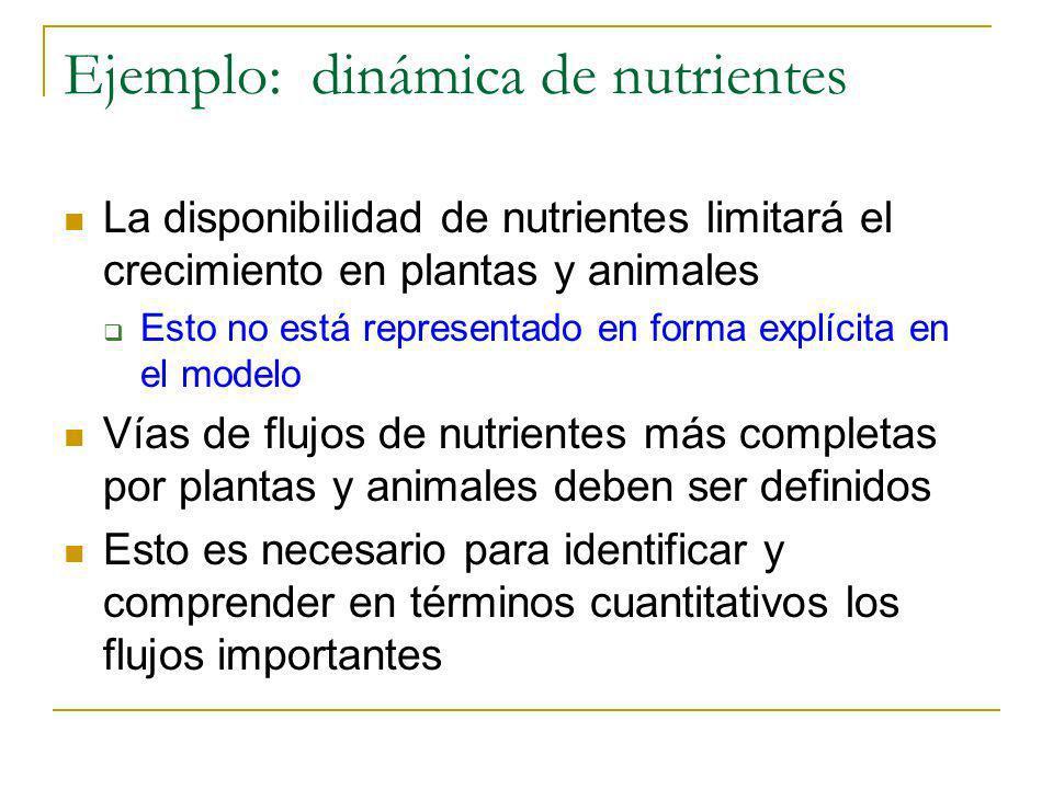 Ejemplo: dinámica de nutrientes La disponibilidad de nutrientes limitará el crecimiento en plantas y animales Esto no está representado en forma explí