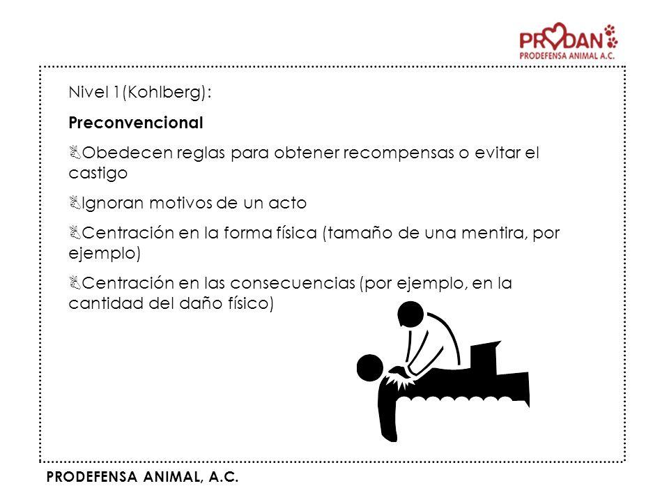 PRODEFENSA ANIMAL, A.C. Nivel 1(Kohlberg): Preconvencional BObedecen reglas para obtener recompensas o evitar el castigo BIgnoran motivos de un acto B