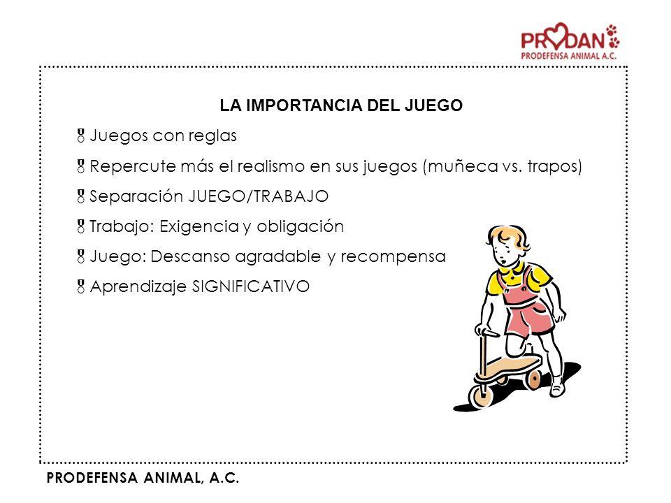 PRODEFENSA ANIMAL, A.C. LA IMPORTANCIA DEL JUEGO Juegos con reglas Repercute más el realismo en sus juegos (muñeca vs. trapos) Separación JUEGO/TRABAJ