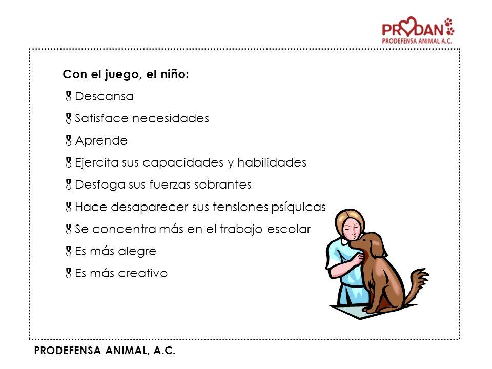 PRODEFENSA ANIMAL, A.C. Con el juego, el niño: Descansa Satisface necesidades Aprende Ejercita sus capacidades y habilidades Desfoga sus fuerzas sobra