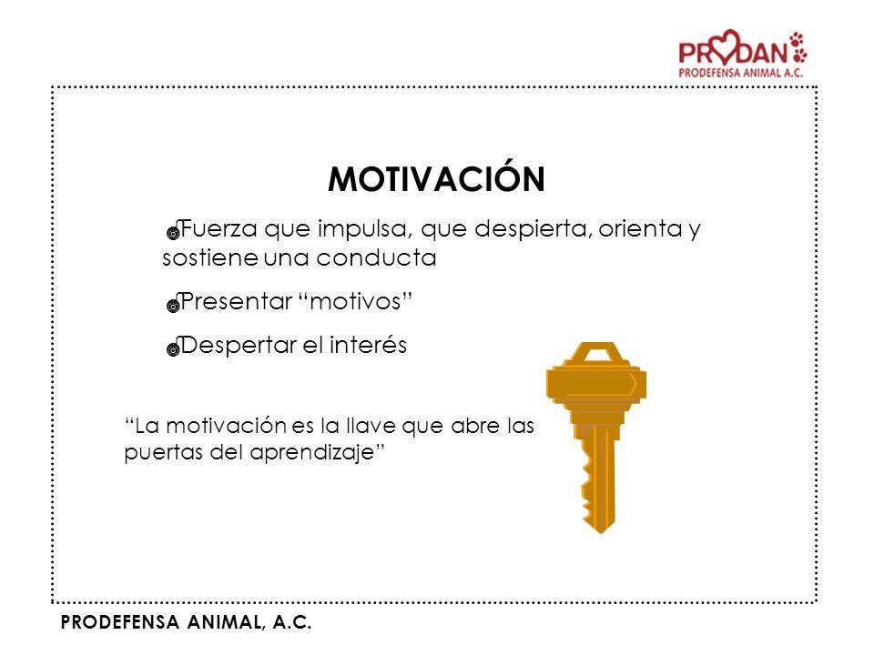 PRODEFENSA ANIMAL, A.C. MOTIVACIÓN Fuerza que impulsa, que despierta, orienta y sostiene una conducta Presentar motivos Despertar el interés La motiva