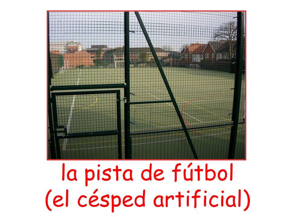 la pista de fútbol (el césped artificial)