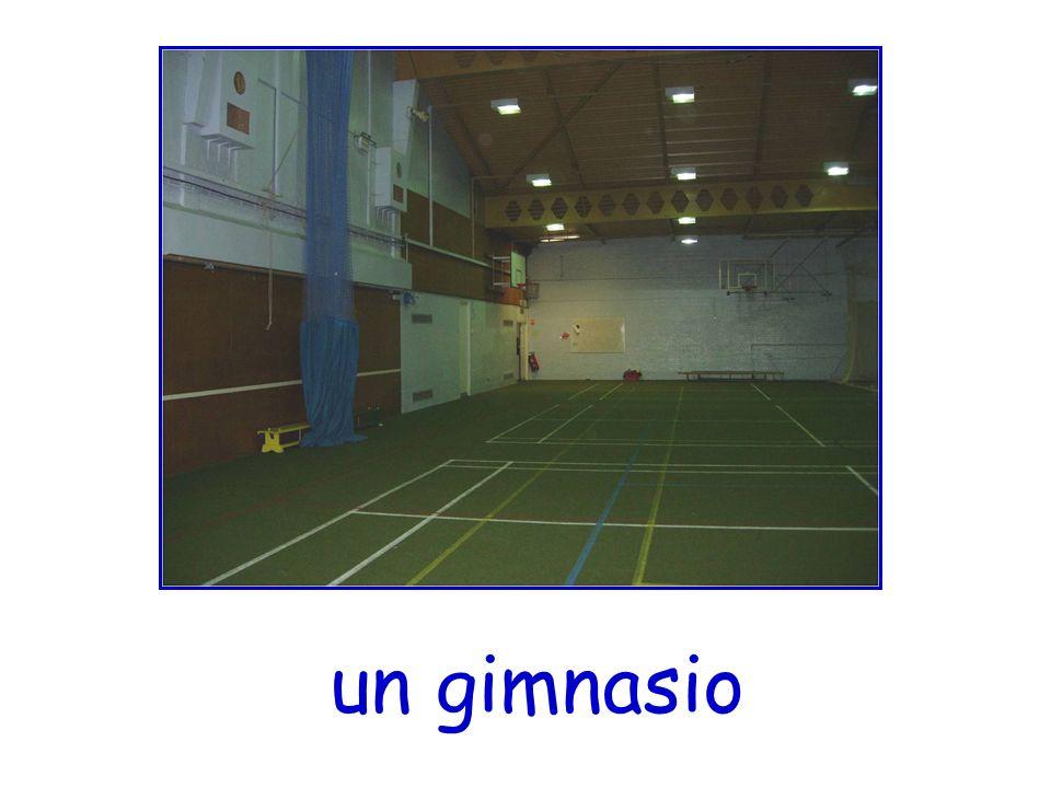 un gimnasio