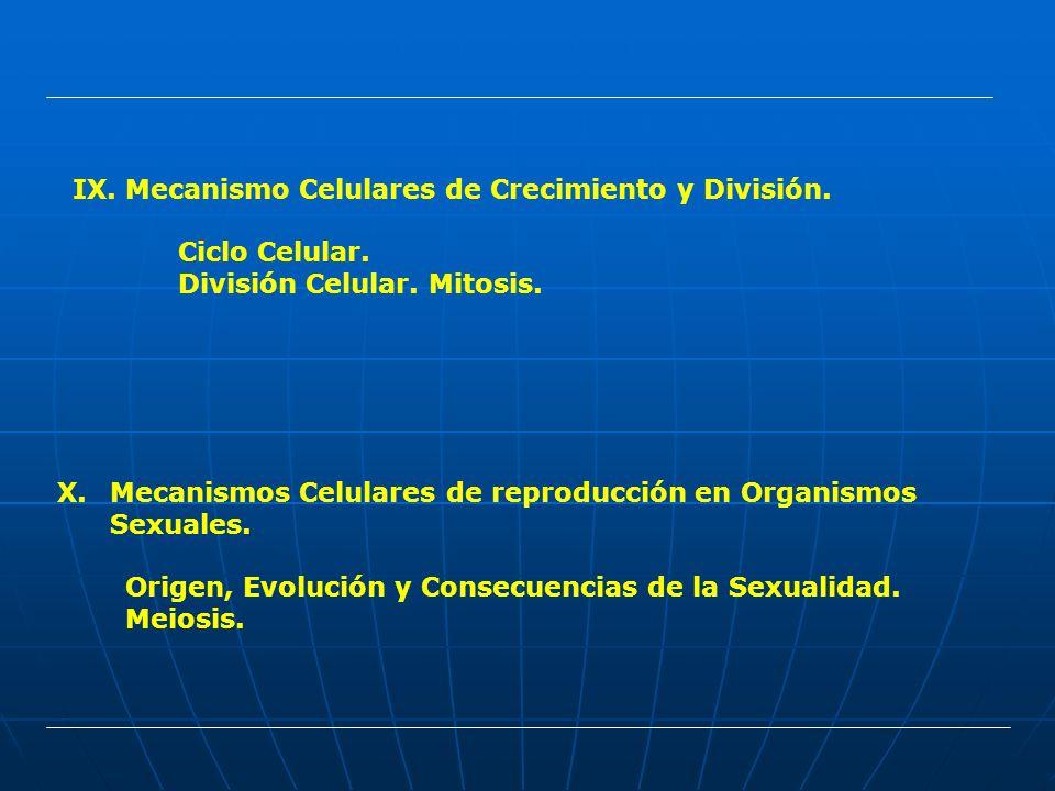 IX.Mecanismo Celulares de Crecimiento y División. Ciclo Celular. División Celular. Mitosis. X.Mecanismos Celulares de reproducción en Organismos Sexua