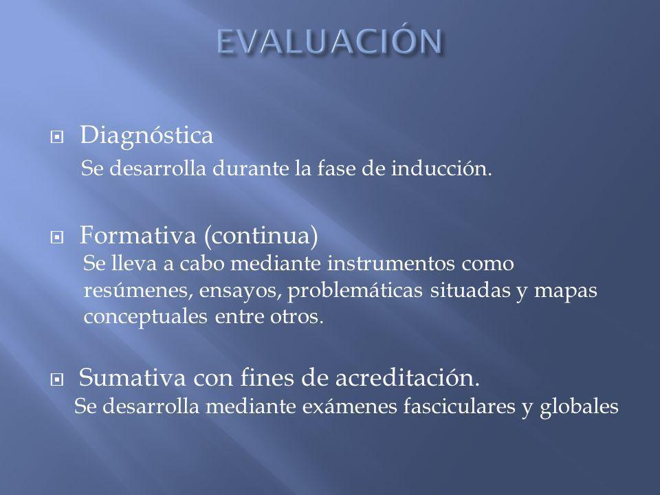 Diagnóstica Se desarrolla durante la fase de inducción.