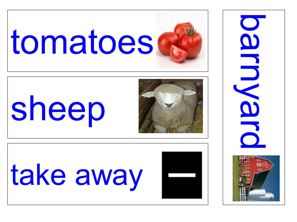 tomatoes sheep take away barnyard